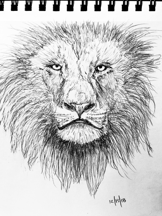 Lion drawing – Luke 12/15/2018